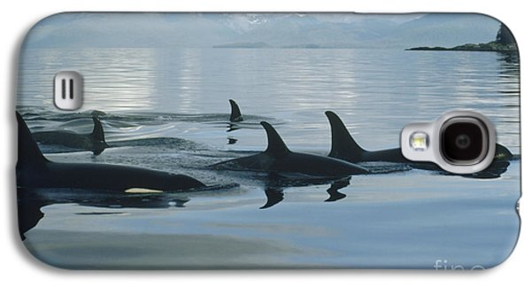 Animals and Earth - Galaxy S4 Cases - Orca Pod Johnstone Strait Canada Galaxy S4 Case by Flip Nicklin