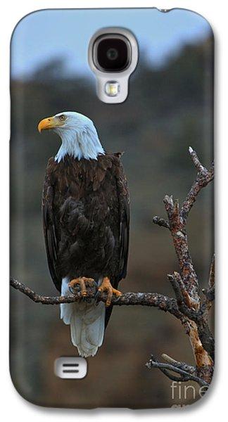 Oregon Bald Eagle Galaxy S4 Case by Adam Jewell