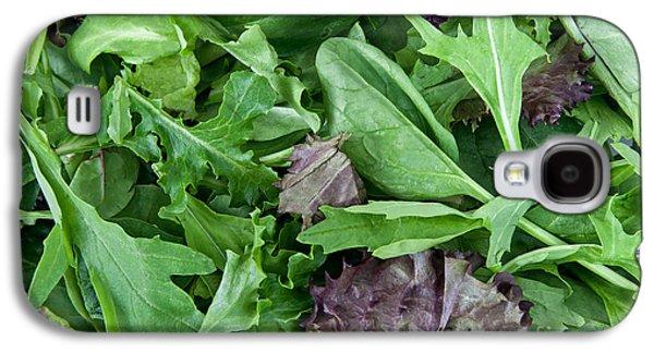 Romaine Galaxy S4 Cases - Organic Spring Mix Salad Mix Galaxy S4 Case by Inga Spence