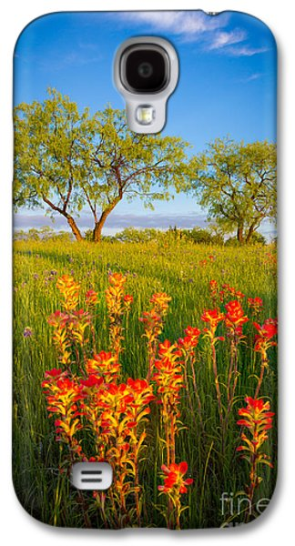 Pasture Scenes Photographs Galaxy S4 Cases - Paintbrush on Fire Galaxy S4 Case by Inge Johnsson