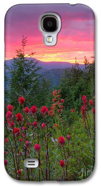 Idaho Photographs Galaxy S4 Cases - Painted Sky Galaxy S4 Case by Idaho Scenic Images Linda Lantzy