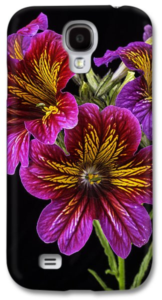 Painted Details Galaxy S4 Cases - Painted Tongue Flowers Galaxy S4 Case by Garry Gay