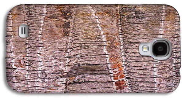 Nature Abstracts Galaxy S4 Cases - Palm Bark Tribal 16 Galaxy S4 Case by Lynda Lehmann