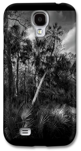 Palms And Palmettos Galaxy S4 Case by Marvin Spates