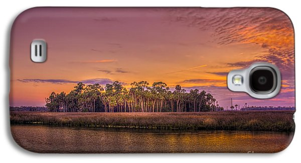 Floods Galaxy S4 Cases - Palms Delight Galaxy S4 Case by Marvin Spates