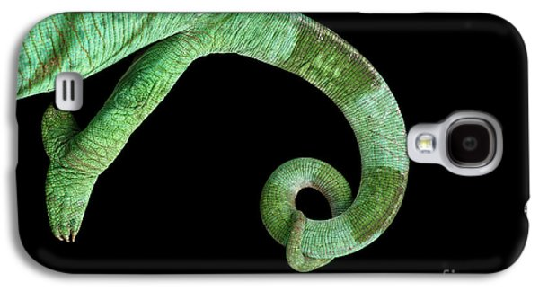 Parson Chameleon, Calumma Parsoni On Black Background, Top View Galaxy S4 Case by Sergey Taran