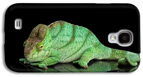Parson Chameleon, Calumma Parsoni Orange Eye On Black Galaxy S4 Case by Sergey Taran