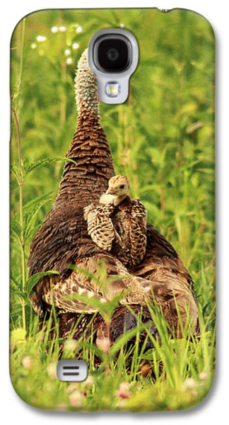 Young Turkey Galaxy S4 Cases - Peeking Out Galaxy S4 Case by Viviana  Nadowski