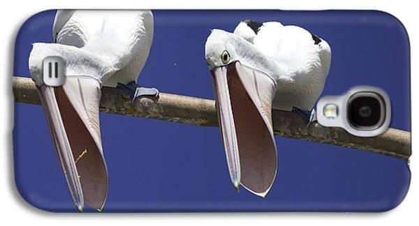 Birding Photographs Galaxy S4 Cases - Pelican burp Galaxy S4 Case by Sheila Smart
