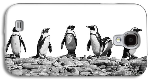 Penguins Galaxy S4 Case by Delphimages Photo Creations