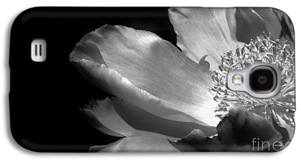 Botanical Galaxy S4 Cases - Peony Dream in BW Galaxy S4 Case by Jackie Burlingame