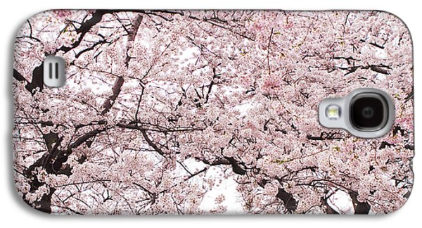 Cherry Blossoms Galaxy S4 Cases - Pink Cherry Blossom Tree Galaxy S4 Case by Ariane Moshayedi