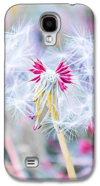 Pink Dandelion Galaxy S4 Case by Parker Cunningham