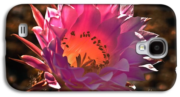 Haybale Galaxy S4 Cases - Pink Glow Galaxy S4 Case by Robert Bales