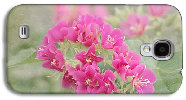 Florida Flowers Galaxy S4 Cases - Pink In the Mist Galaxy S4 Case by Kim Hojnacki