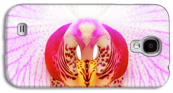 Pink Orchid Galaxy S4 Case by Dave Bowman