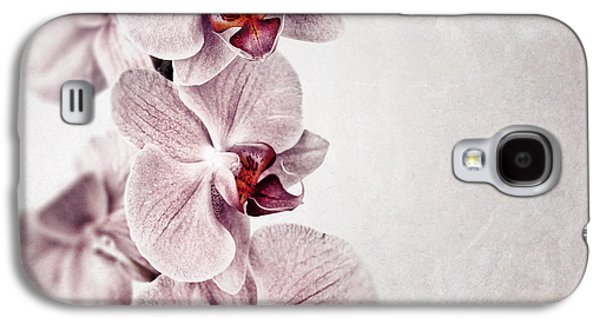 Manuscript Galaxy S4 Cases - Pink orchid vintage Galaxy S4 Case by Jane Rix
