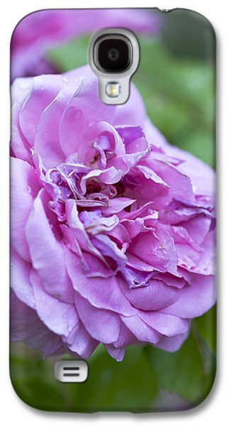 Garden Images Galaxy S4 Cases - Pink Rose Flower Galaxy S4 Case by Frank Tschakert