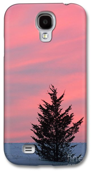 Surtex Licensing Galaxy S4 Cases - Pink skies and the Tree Galaxy S4 Case by Anahi DeCanio - ArtyZen Studios