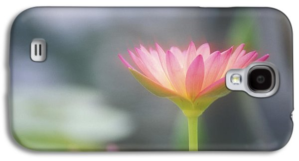 Nature Center Pond Galaxy S4 Cases - Pink Water Lily Galaxy S4 Case by Ron Dahlquist - Printscapes
