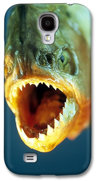 Piranha Galaxy S4 Cases - Piranhas Mouth Galaxy S4 Case by David Aubrey