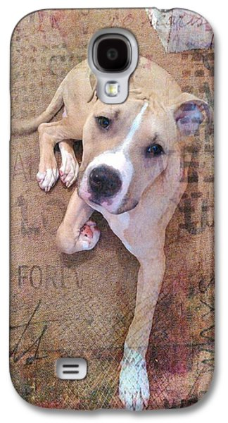 Pit Bull's Expressions Galaxy S4 Case by Becky Burt