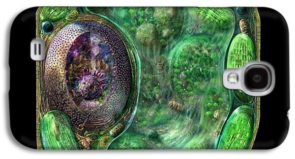 Lab Digital Art Galaxy S4 Cases - Plant Cell Galaxy S4 Case by Russell Kightley