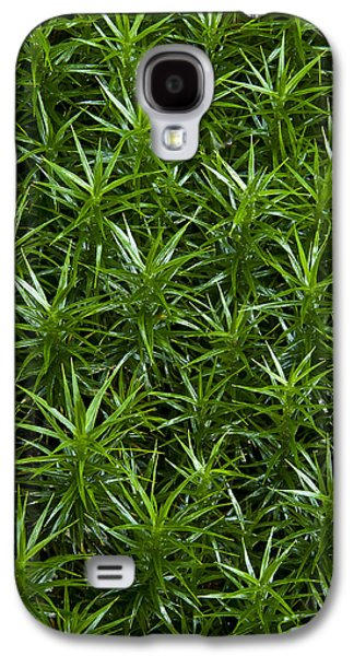 Fens Galaxy S4 Cases - Plantscapes - Tiny trees Galaxy S4 Case by Andy-Kim Moeller