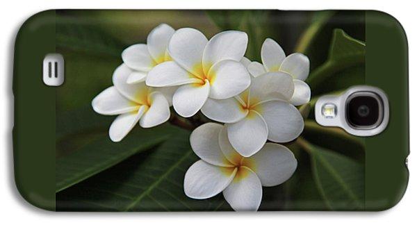 White Flowers Galaxy S4 Cases - Plumeria - Golden Hearts Galaxy S4 Case by Kerri Ligatich