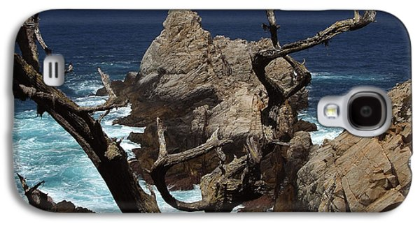 California Beach Galaxy S4 Cases - Point Lobos Rocks and Branches Galaxy S4 Case by Charlene Mitchell