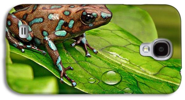 poison art frog Panama Galaxy S4 Case by Dirk Ercken