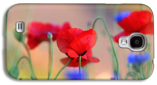 Nature Abstracts Galaxy S4 Cases - Poppies in spring  Galaxy S4 Case by Lynn Hopwood