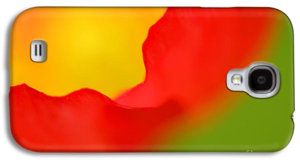 Close Photographs Galaxy S4 Cases - Poppy Galaxy S4 Case by Silke Magino