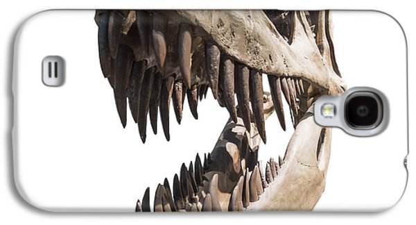 Portrait Of A Dinosaur Skeleton, Isolated On Pure White. Galaxy S4 Case by Caio Caldas