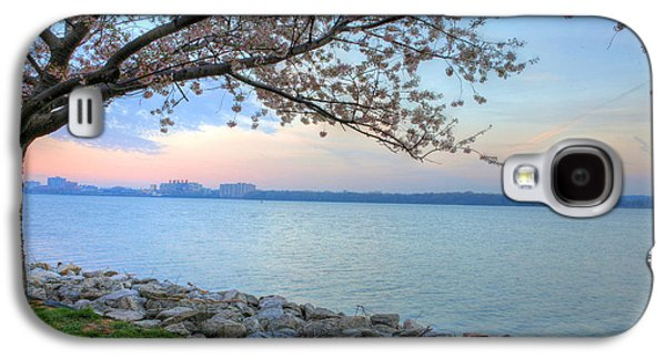 Cherry Blossoms Galaxy S4 Cases - Pretty Potomac Galaxy S4 Case by JC Findley