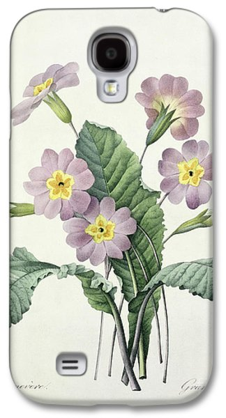 Nature Study Drawings Galaxy S4 Cases - Primrose Galaxy S4 Case by Pierre Joseph Redoute