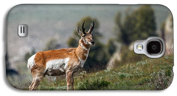 Grazing Snow Galaxy S4 Cases - Pronghorn Antelope Galaxy S4 Case by Robert Bales