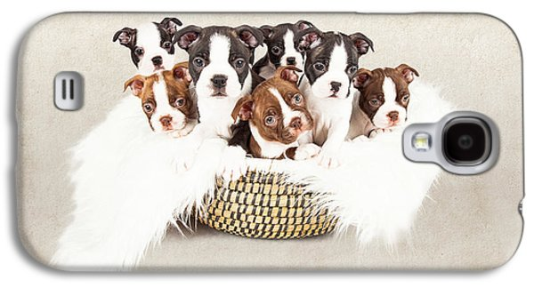 Adorable Photographs Galaxy S4 Cases - Puppies in a Basket With Textured Background  Galaxy S4 Case by Susan  Schmitz