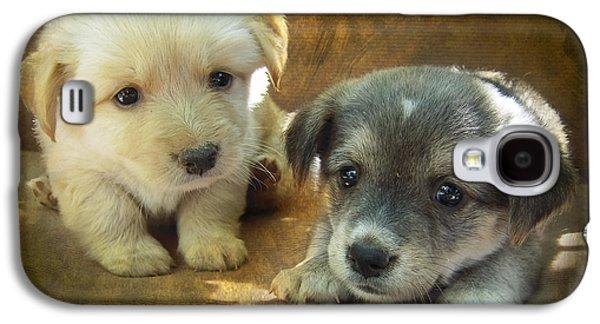 Pups Digital Art Galaxy S4 Cases - Puppies Galaxy S4 Case by Svetlana Sewell