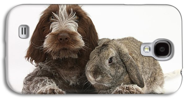 Domesticated Animals Galaxy S4 Cases - Puppy And Rabbt Galaxy S4 Case by Mark Taylor