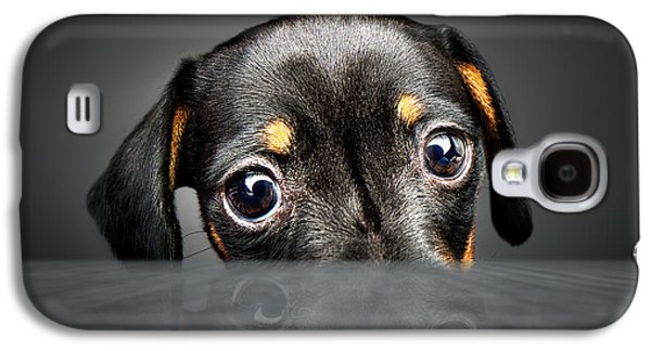 Puppy Longing For A Treat Galaxy S4 Case by Johan Swanepoel