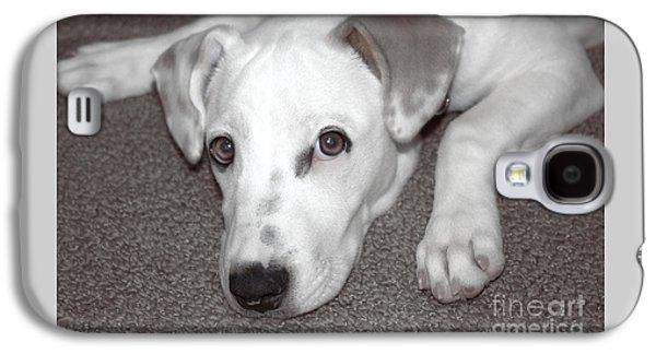 Puppies Digital Galaxy S4 Cases - Puppy Love Galaxy S4 Case by Ella Kaye Dickey