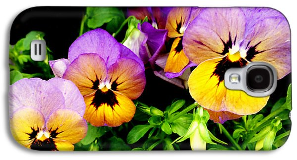 Green Galaxy S4 Cases - Purple and Yellow Pansies Galaxy S4 Case by Kathy Krause