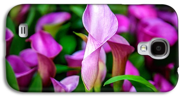 Calla Lilly Galaxy S4 Cases - Purple Calla Lilies Galaxy S4 Case by Az Jackson