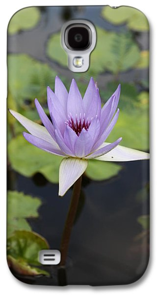 Bloosom Galaxy S4 Cases - Purple Lotus Galaxy S4 Case by Christiane Schulze Art And Photography