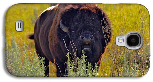 Bison Digital Galaxy S4 Cases - Putting on the Charm Galaxy S4 Case by Mary Dreher