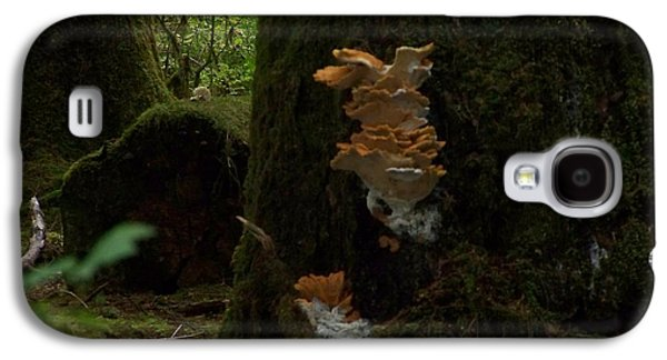 Digital Pyrography Galaxy S4 Cases - Quinault Wa Fungus In The Forest Galaxy S4 Case by Laurie Kidd