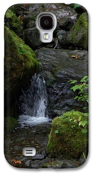 Digital Pyrography Galaxy S4 Cases - Quinault Washington Rain Forest Galaxy S4 Case by Laurie Kidd