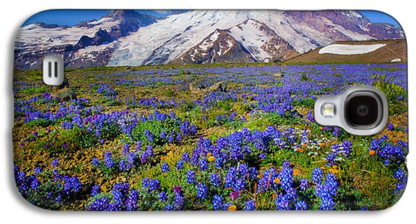 Geology Photographs Galaxy S4 Cases - Rainier Lupines Galaxy S4 Case by Inge Johnsson