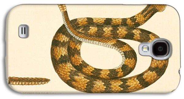 Rattlesnake Galaxy S4 Case by Mark Catesby